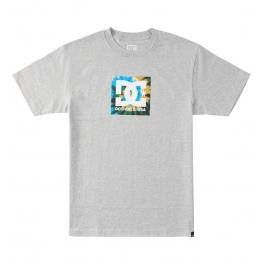 DC Shoes - T-shirt Square Star HSS